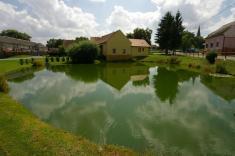 Čištění rybníků vKostelci